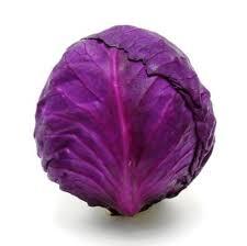 cabbage-(purple)