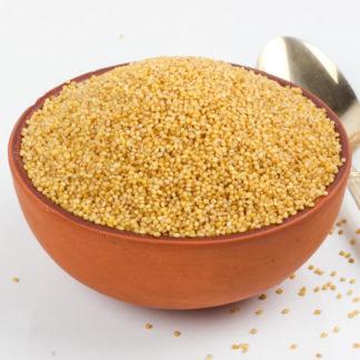 foxtail-millet-(thinai)