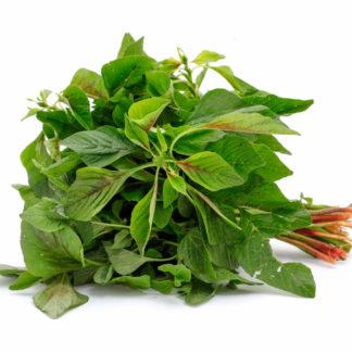 harive-leaves